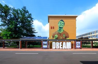 鲁能泰山足球学校改造工程