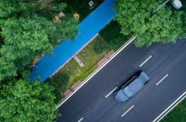 固安孔雀大道改造设计