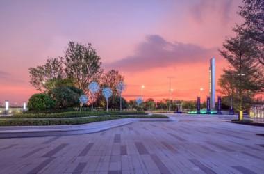 阳江绿地展示区